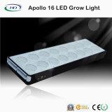 アポロ16 LEDは医学のハーブのために軽く育つ