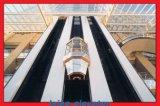 Levage panoramique de passager de plafond d'acier inoxydable de miroir