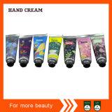 Haute qualité avec un bon prix profonde de l'humidité Hand Cream