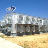 Die zwei Geschoss-bringen vorfabriziertes Stahlkonstruktion-Geflügel Huhn-Haus unter