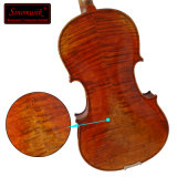 Bonito Flame Maple Viola con acabado brillante para la venta caliente