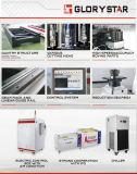 Machine de découpage de coupeur de laser de fibre de tube d'acier inoxydable d'acier du carbone