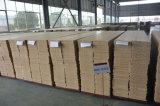 raad en het Comité van de Muur WPC van de Decoratie van de Muur van 300mm de Binnen Materiële (A0112)