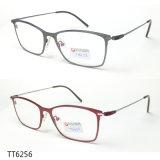 De eenvoudige Optische Frames van de Tendens van het Titanium (TT 6256)