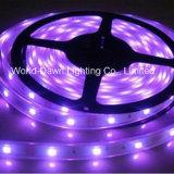 Striscia flessibile di alta luminosità LED con approvazione del Ce per l'indicatore luminoso (multicolore) viola di colore