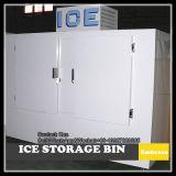 Piscina Usando Merchandiser de gelo na vertical