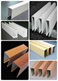 Suspendu plafond pourrait être perforée panneau décoratif du déflecteur