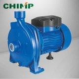 110V/220V 단일 위상 전력 원심 깨끗한 물 펌프