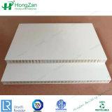 Painel de fibra de vidro com alto ponto alto do painel de favo de PRFV