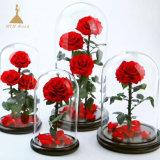 Everlasting stabilisé Roses rouges dans les cloches avec boîte cadeau noire S M L XL Tailles disponibles de verre
