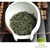 Zuiver Aroma/de Verse Reeks a van de Thee van Xinyang Maojian van de Smaak Groene