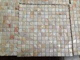 Blanco natural mosaico de Shell (GL001MSH)