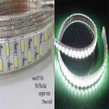 Doppia riga indicatore luminoso della corda dell'indicatore luminoso di striscia del LED 5630 120LED/M LED