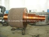 Arbre de pièce forgéee utilisé dans le dessiccateur avec du divers matériau
