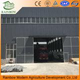 Túnel / Single-Span / Multispan Plastic Film Estufa / Estufa para Agricultura