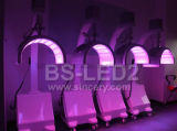 Thérapie légère en gros du rajeunissement LED/PDT de peau de thérapie de lumière de courroie du photon PDT DEL