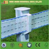 poste électrique de frontière de sécurité de pieu en plastique de blanc de 4FT pour le bétail