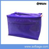 Изолированные напольные мешки охладителя обеда льда пикника для промотирования