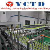 Transportador de cadena de la placa (YCTD)