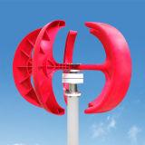 새로운 100W 12V/24VAC 소형 아름다운 수직 바람 터빈 영구 자석 발전기 (산출 전압 12VAC)