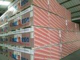 Shandong Plasterbord/Gips-Vorstand der Trockenmauer-1200*2400*12mm