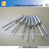 Rebites blindados de alumínio / DIN7337 Rebites blindados de alumínio / aço