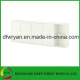Küche-Schrank Carcasee Möbel