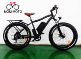 Fetter Gummireifen-Schnee-elektrisches Fahrrad 500W für Mann