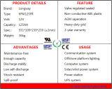 bateria profunda do ciclo 12V125ah com terminal dianteiro para o apoio da potência solar