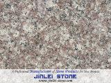 Mattonelle nebbiose del granito di malva G664 per il controsoffitto del pavimento/parete/cucina