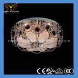 Hot Sale Home Lamp Design Decoration Ceiling Light (MX096)