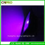 50W ultraviolettes IP65 UVled Flut-Licht mit uns Stecker oder europäischer Stecker