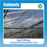 Estufa de vidro durável de aço galvanizada do MERGULHO quente para o pepino