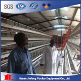 Gaiola de pássaros agricultural da galinha das aves domésticas da ferramenta para a exploração agrícola