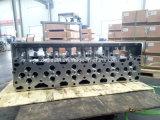 Auto cabeça de cilindro Diesel 2864028 do motor dos Spareparts 11L M11 Qsm11