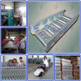 Het op zwaar werk berekende Kt3 Dienblad van de Kabel van de Ladder voor Australië