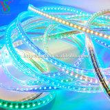 230V SMD 5050 유연한 LED 지구 빛