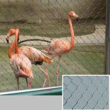 동물원 메시 또는 스테인리스 새 그물세공 또는 새장 메시 또는 스테인리스 철사 밧줄 메시 또는 그물세공