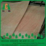 Chapa de madera de arce se enfrentan la madera contrachapada muebles de madera contrachapada de arce de grado/