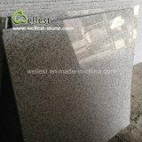 Серая Polished плитка пола гранита G603 как строительный материал