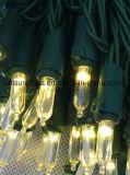 LED-Zeichenkette-Licht in der goldenen warmen weißen Farbe mit Qualität Promformance (LW100)
