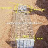 La capa de diseño de jaulas de pollo de granja avícola de Kenia
