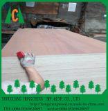 La película de las ventas de la Fábrica-Directo hizo frente a la madera contrachapada, madera contrachapada comercial