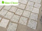 Tuiles de mosaïque de marbre blanches de petit hexagone