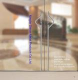 Тип ручка двери Dm-DHL нержавеющей стали стеклянная 049 Dimon h