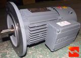 Fase tres motores de inducción AC / Motor de la puerta de rodillos de alta velocidad