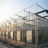 野菜およびフルーツを植えるための高品質のプラスチックフィルムの温室