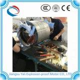 Motore a tre fasi della gabbia di scoiattolo del motore elettrico di induzione del motore asincrono Ye3