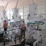 200t/24h小麦粉の処理機械
