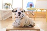 Kussen van de Pluche van de Honden van de Decoratie van het huis het Mooie voor Bank (35C0507)